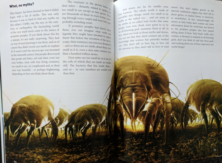 Pages about dust mites from The Magic of Reality